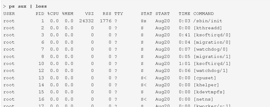 Linux, kill, terminate, kill -15 pid, kill -15, kill -9 pid, kill -9, pid, linux process, process, not running, process not running, start, restart, start or restart, not responding, process not responding, kernel, pid not removed, kill the process, stop the process, terminate the process, end the process, end the process gracefully, writing any logging data, virtualmin, webmin, Running Processes,