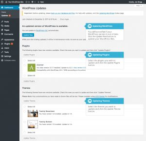 updating wordpress screen